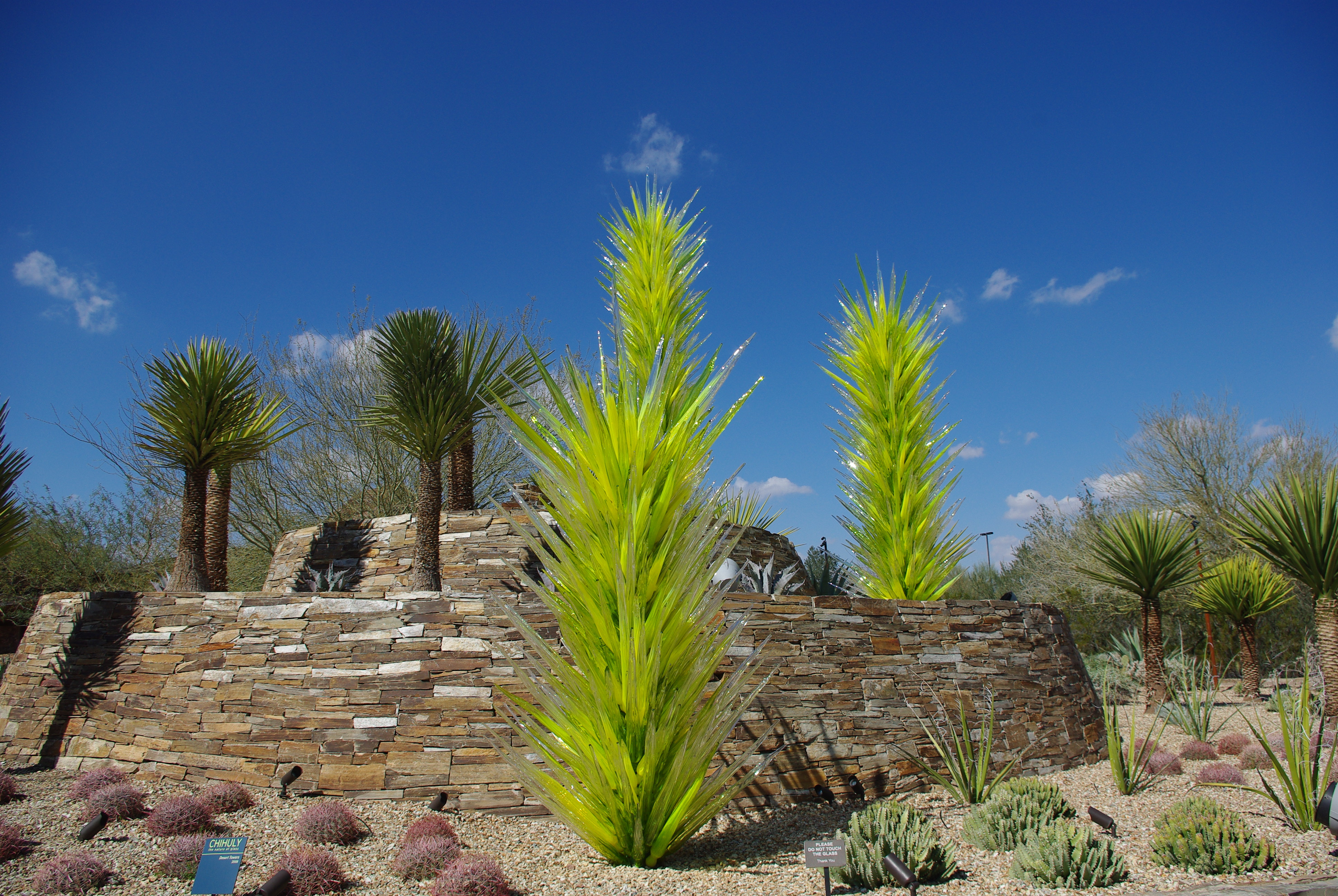 Chihuly Arizona Cool Above Dale Chihuly Red Reeds Desert Botanical Garden Phoenix Arizona With