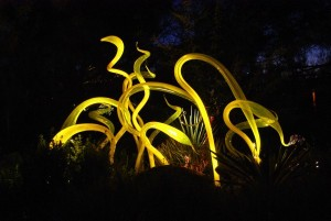 """Chihuly's """"Yellow Herons"""" nestle among the plants in the Steele Herb Garden."""